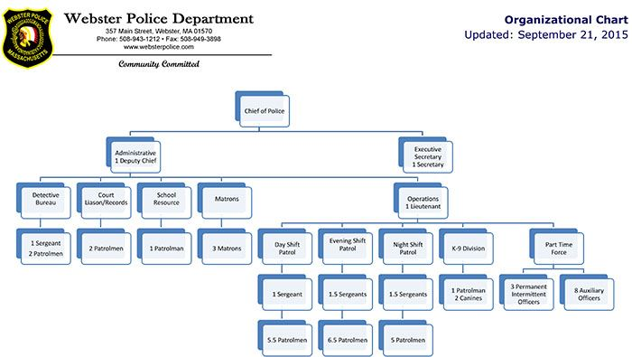 Image of organizational chart